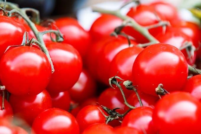 Tomaten Züchten Hero